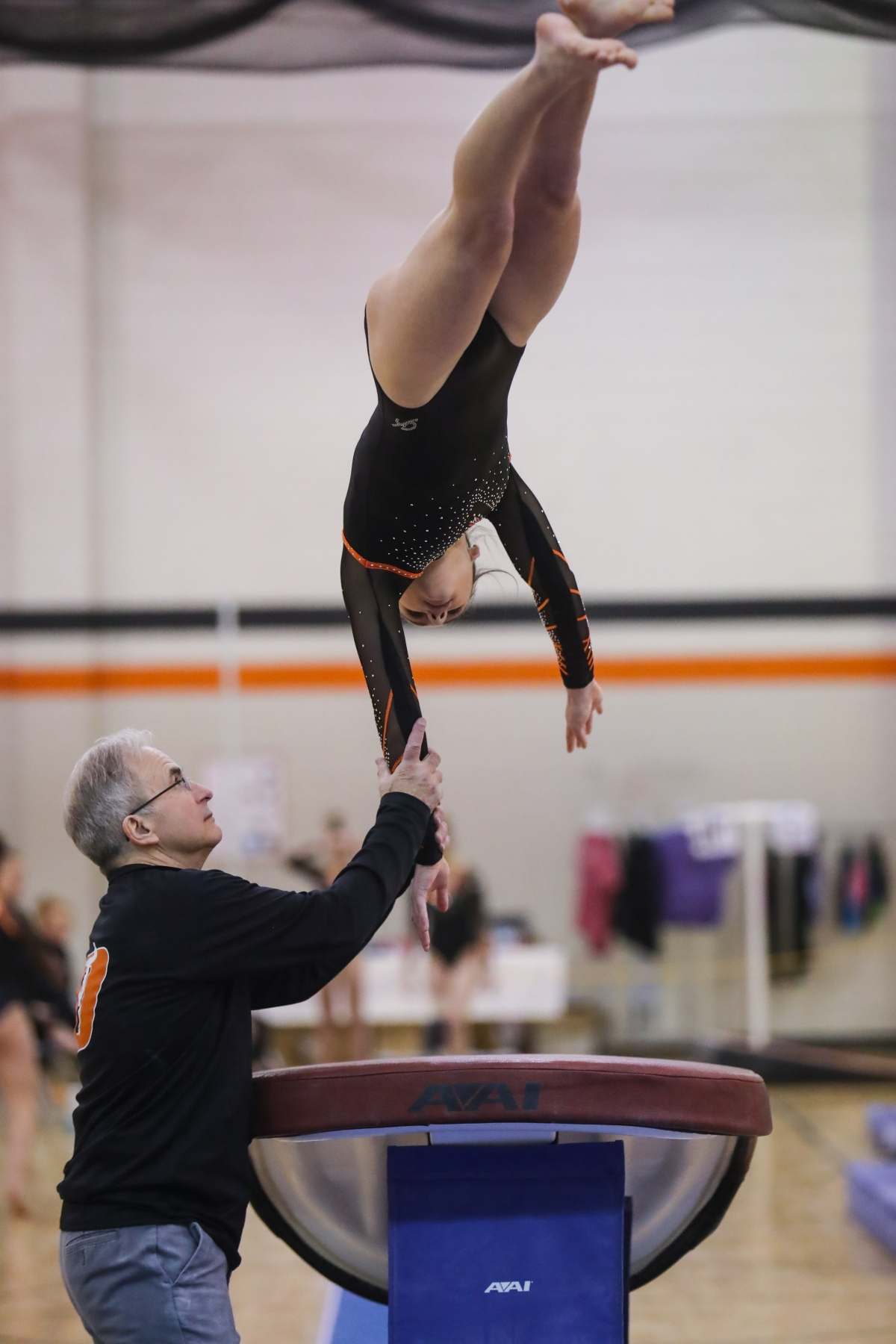 Culture of Champions: Van Ells has powerful Dickinson gymnastics team seeking fourth straight title