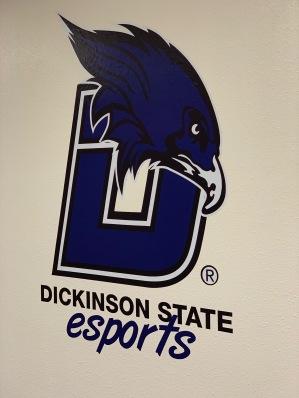 050119 DSU esports logo