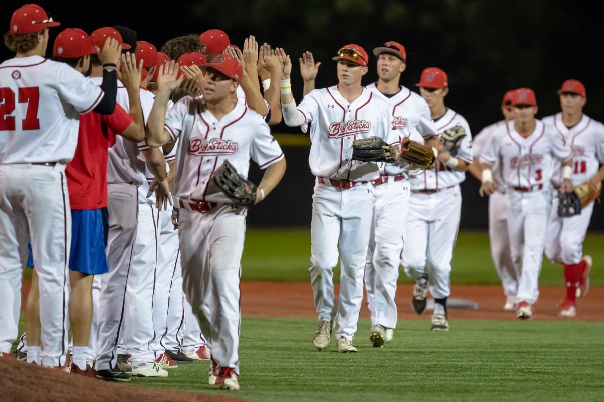 Big Sticks baseball is back with localownership